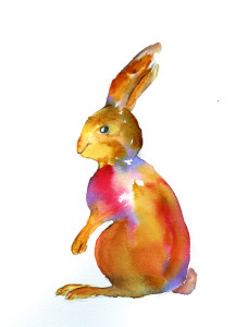 05_Bunny1Profile_WC_WEB